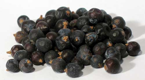 1 Lb Juniper Berries whole