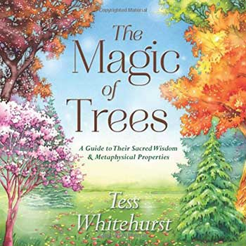 Magic of Trees by Tess Whitehurst